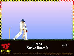 Gioca gratuitamente a Top Spinner Cricket