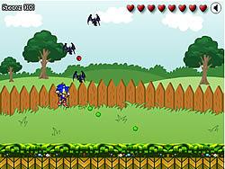 Sonic in Graden Spiel