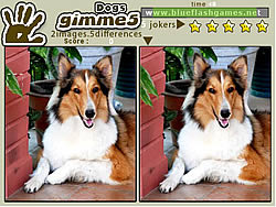 無料ゲームのGimme 5 Dogsをプレイ