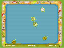 Turtle Pool لعبة