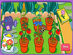 Dora's Magical Garden