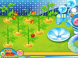 Gioca gratuitamente a Sue Tomato Factory